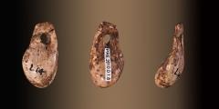 Gisement préhistorique de la Madeleine -