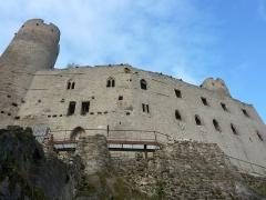 Ruines du château Haut-Andlau - Château de Haut-Andlau
