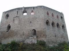 Ruines du château de Spesbourg - Français:   Château Du Spersbourg vu d\'en bas