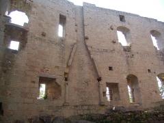 Ruines du château de Spesbourg - English: Inside of the Spesbourg castle, Bas-Rhin, France