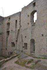 Ruines du château de Spesbourg -  DSC_0016