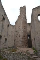 Ruines du château de Spesbourg -  DSC_0009