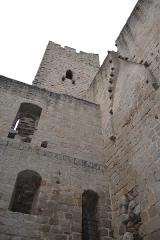 Ruines du château de Spesbourg -  DSC_0021
