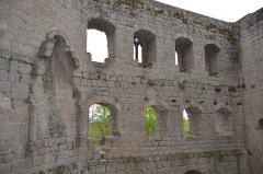 Ruines du château de Spesbourg -  DSC_0014
