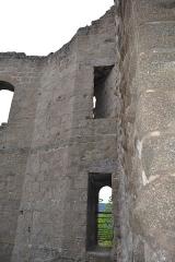 Ruines du château de Spesbourg -  DSC_0018