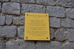 Ruines du château de Spesbourg -  DSC_0006