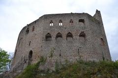 Ruines du château de Spesbourg -  DSC_0003
