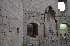 Ruines du château de Spesbourg -  DSC_0015