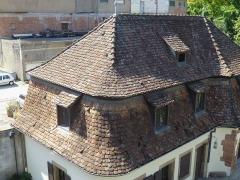 Ancien Hôtel Marco - Français:   Folie Marco à Barr (Bas-Rhin): toiture des communs, à la Mansart, à combles brisés; tuiles alsaciennes à queue de castor (Biberschwanz); les toitures des dépendances font partie des éléments protégées par les MH.