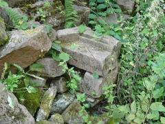 Ruines du château de Schoeneck -  P1080568