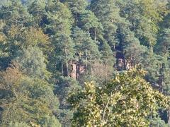 Ruines du château de Schoeneck -  P1080541