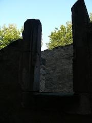 Ruines du château de Schoeneck -  P1080475