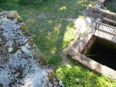 Ruines du château de Schoeneck -  P1080464