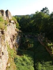 Ruines du château de Schoeneck -  P1080563