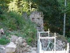 Ruines du château de Schoeneck -  P1080500