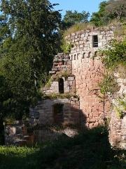 Ruines du château de Schoeneck -  P1080462