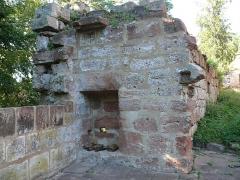 Ruines du château de Schoeneck -  P1080438