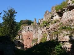 Ruines du château de Schoeneck -  P1080432