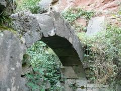 Ruines du château de Schoeneck -  P1080605