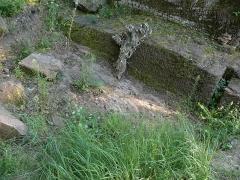 Ruines du château de Schoeneck -  P1080596
