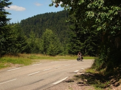 Sommet et musée du Donon -  Road to Col du Donon