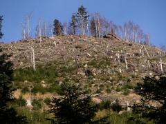 Sommet et musée du Donon -  sommet et pente ouest du Petit Donon