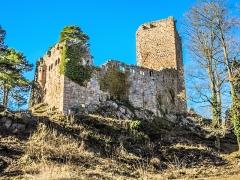 Vestiges du château de Landsberg - Français:   Château du Landsberg, vu de sa basse-cour.