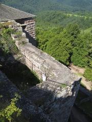 Ruines du château de Fleckenstein -  Château du Fleckenstein Parc naturel régional des Vosges du Nord, Alsace, France  August 2010