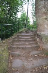 Château du Froensbourg ou Frundsberg -  DSC_2635