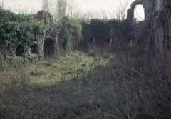 Ruines du château Guirbaden - Deutsch: Burg Girbaden, Palas. Die Anlage des Wohnbaus erinnert an Burg Wildenberg im Odenwald