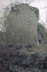 Ruines du château Guirbaden - Deutsch: Burg Girbaden. Vorburg