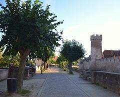 Vieux remparts - English: Rempart Maréchal Foch. Obernai a la particularité d'avoir encore une muraille défensive moyenâgeuse en bonne état, la balade autour n'est que plus belle
