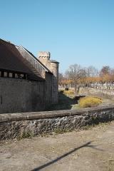 Vieux remparts - Deutsch: Stadtmauer, Rempart Maréchal Foch, in Obernai im Département Bas-Rhin in der Region Grand Est (Frankreich)
