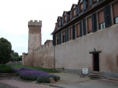 Vieux remparts -  Obernai