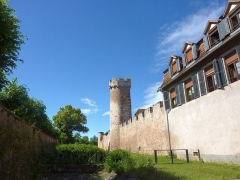 Vieux remparts - English: Ramparts of Obernai