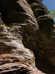 Mur païen -  Paroi rocheuse montrant le grès des Vosges, le long du circuit Sud du Mur Païen.