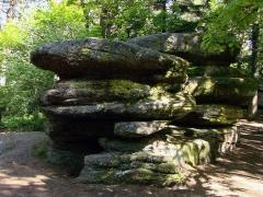Mur païen -  Beckenfels, rochers dont le sommet présente une cuvette creusée, situés le long du circuit Sud du Mur Païen.