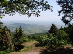 Mur païen -  Vue de la plaine d'Alsace depuis le Rocher du Panorama .