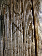 Mur païen -  Rune gravée dans le bois du kiosque de Maennelstein, à la table d'orientation. Cette rune, gravée il y a quelques mois ou quelques années, est Mannaz, la 4ème rune du 3ème aett du Futhark germanique.