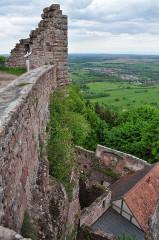 Ruines du château de Hohbarr ou Haut-Barr -  Haut-Barr