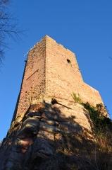 Ruines du château Wangenbourg -  Château de Wangenbourg