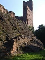 Ruines du château Wangenbourg -  Ruines du Wangenbourg