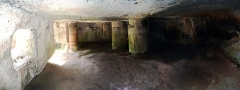Ruines du château du Nouveau-Windstein -  DSC_6543 - DSC_6548