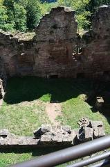 Ruines du château du Nouveau-Windstein -  DSC_6482