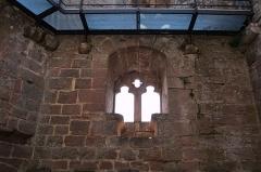 Ruines du château du Nouveau-Windstein -  DSC_6473