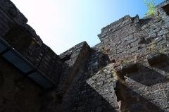 Ruines du château du Nouveau-Windstein -  DSC_6401