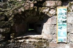 Ruines du château du Nouveau-Windstein -  DSC_6327