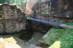 Ruines du château du Nouveau-Windstein -  DSC_6324