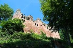 Ruines du château du Nouveau-Windstein -  DSC_6283
