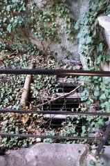 Ruines du château du Vieux-Windstein -  DSC_6693